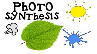 Photosynthesis : How plants make food : Science Videos :  Photosynthesis Animation for Kids