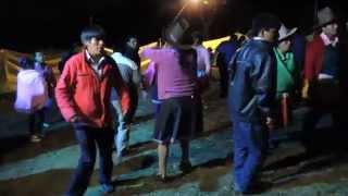 FLOR HUANAYINA EN CACHIPAMPA (MARIAN)1