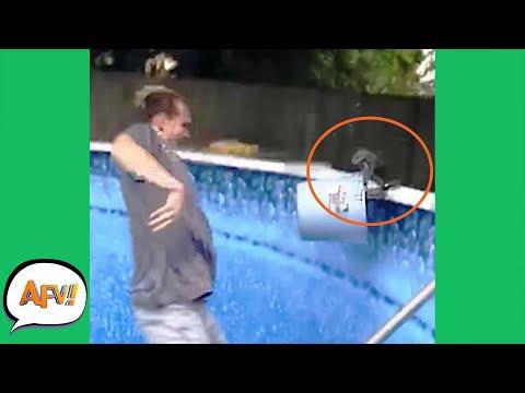 Squirrel RESCUE Turned ATTACK 😂 Funniest Animals AFV 2021