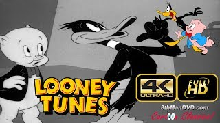 LOONEY TUNES (Looney Toons): Porky Pig