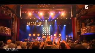 Alcaline, le concert Bernard Lavilliers France 2 2014-06-05