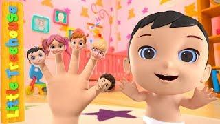 Finger Family Song | Kindergarten Nursery Rhymes for Kids by Little Treehouse
