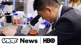 Meet The Scientists Who Created The First Human-Pig Hybrid: VICE News Tonight on HBO