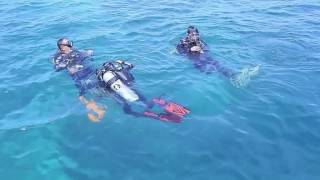 Surga Bawah Laut Pulau Muna FILM DIVE SITE DKP MUNA