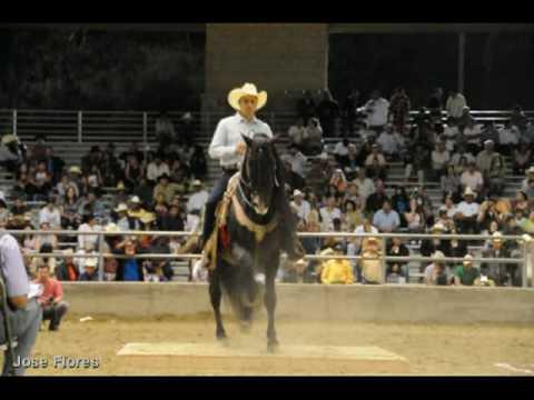 Baile de caballos en Feria 2010