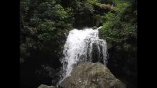 Rupkothar rajotto - Miles রূপকথার রাজত্ব