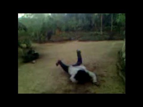 My frnd wanchu naga. HADWANG 4m india, arunachal pradesh. It is very very interesting.
