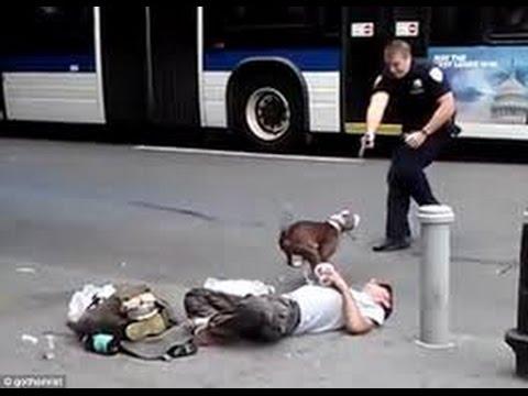 Pit bull enloquecido ataca a sus dueños Pit bull attacks his crazed owners.