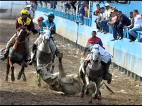 Cheo Hernandez Prisco y Armando Martinez La Federacion Venezolana De Coleo 2006