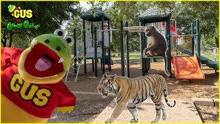 Pretend Play Catching Real Zoo Animals at the Outdoor Playground Park