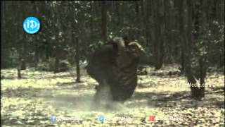 Siripuram Monagadu Movie - Krishna,Jayaprada, Suthivelu, Krishna Nice Fight Scene