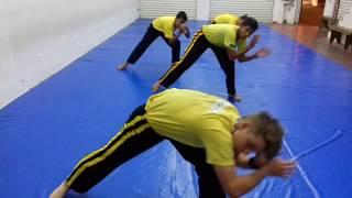 Capoeira Angola: fundamentos e treinamento