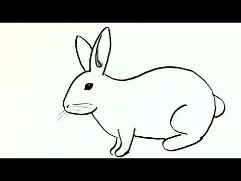 Xxx Mp4 How To Draw A Rabbit Or Bunny In Easy Steps For Children Beginners 3gp Sex