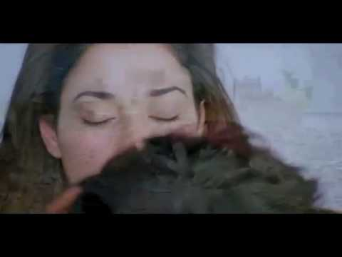Xxx Mp4 Tamanna Hot Kiss And Lip Lock Scenc With Ram 3gp Sex