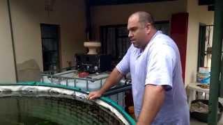 2000 Gallon Fish Pond (8000 liters) running on 40 Watts
