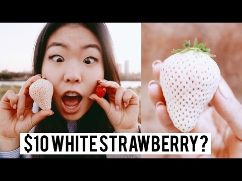 Xxx Mp4 10 Japanese White Strawberry 🍓🤔 3gp Sex