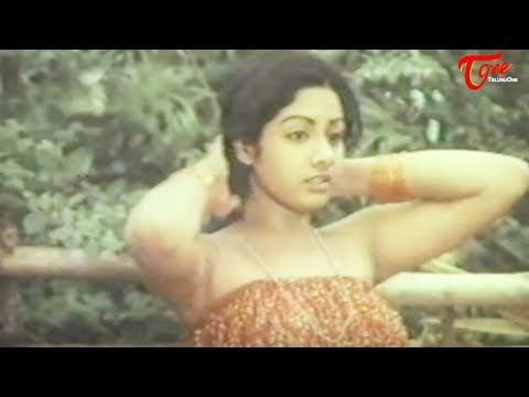 Indian Actress Sridevi's Spicy Video from her First Movie