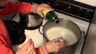 How to Make Paint from Milk Curds