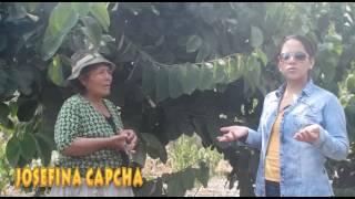 callahuanca 2017
