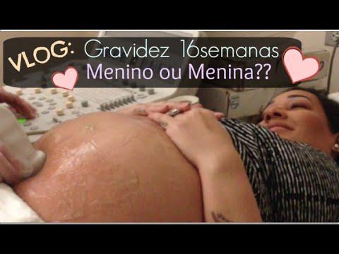 Diario de Gravidez 16Semanas 4 Meses Menino ou Menina