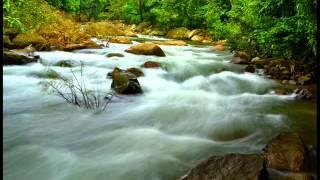 Paithrukam - sivam sivadagana nayaka - beautiful song