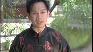 National Geographic Kung Fu Killers DVDrip {BALA}