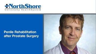 Penile Rehabilitation after Prostate Surgery
