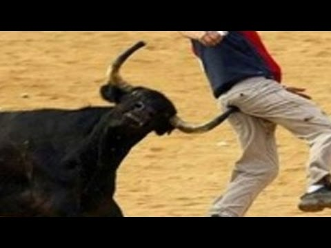 Xxx Mp4 Bullfighting Festival In Span 2017 3gp Sex