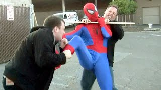 Amazing SPIDER-MAN Fights Crime
