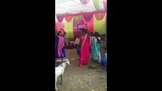 Chalkata hamro jawaniya ye raja