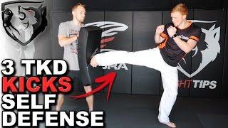 3 Taekwondo Kicks for Self Defense: Ginger Ninja Trickster
