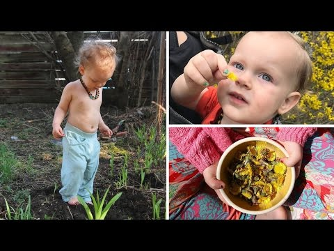 Vegan Kids What We Ate In A Day Foraging
