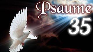 Psaume  35 - Prière de délivrance des ennemis