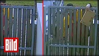 Dreister DHL-Bote schmeißt Paket über Zaun