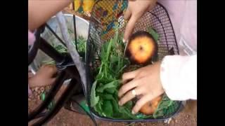 Comedy Funny Children Video Clip 2015 |Children play Baylok Baylor in Cambodia