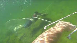 GoPro: sub wing homemade