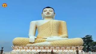 बुद्ध के चरणों  में /buddha ke charano me by tandan