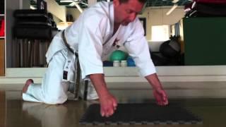 Karate Push-Ups