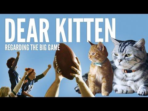 Dear Kitten Regarding The Big Game