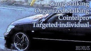 集団ストーキング被害記録 2017.01.25 Gang-stalking Organized-stalking Cointelpro Targeted Individuals