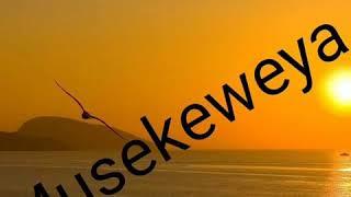 Ikinamico Musekeweya episode 729