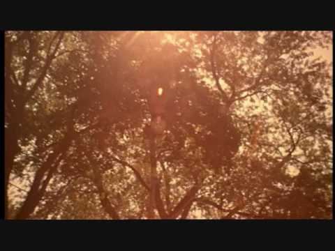 Playground Love - Air from The Virgin Suicides