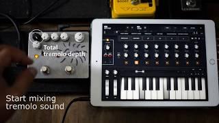 "Nunomo LLC : Grain ""Crazy Fast Tremolo"" Guitar Pedal Demo With Moog Model 15"