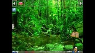 Nature Green Forest Escape Video Walkthrough