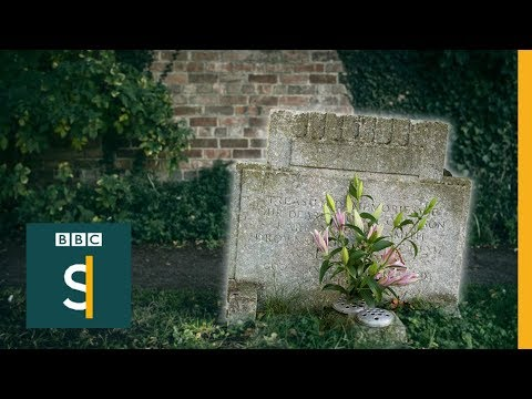 The stranger at my brother s grave FULL DOCUMENTARY BBC Stories