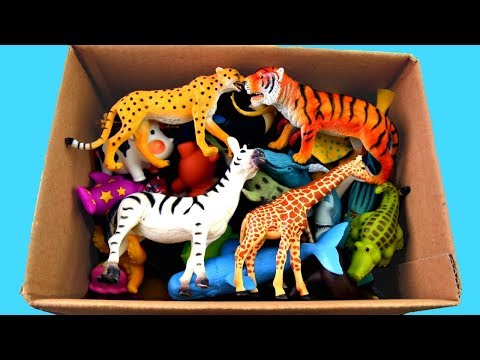 Xxx Mp4 Lots Of Zoo Wild Animals Real Safari Videos And Schleich Toys Learn Colors For Children 3gp Sex