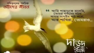 হযরত দাউদ আঃ জীবনী
