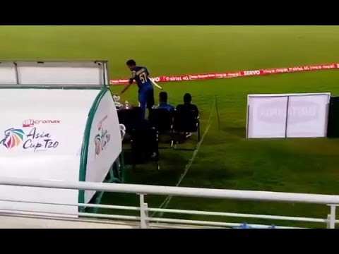 Xxx Mp4 Asia Cup 2016 Highlights Bangladeshi Fan Proposing Malinga 3gp Sex