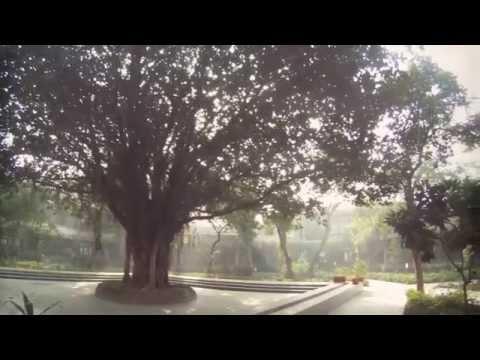 Xxx Mp4 Quot Save Mirambika Memories Of Mirambika Part 2 Quot 3gp Sex