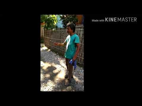 Xxx Mp4 Assamese Fanny Video 3gp Sex